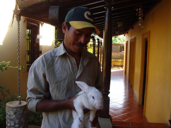Proxecto Coellos